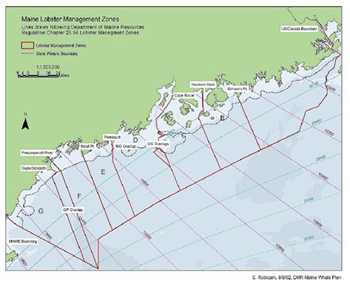 Lobstering and common pool resource management in maine for Fishing areas near me