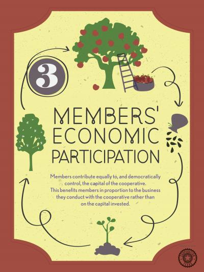 Principle 3: Member Economic Participation